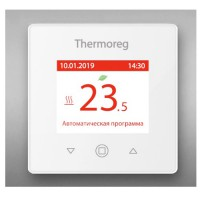 Thermoreg TI-970 Silver