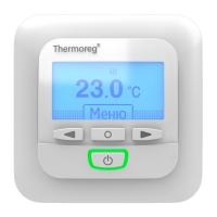 Thermoreg TI-950