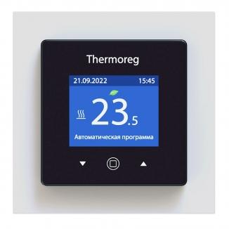 Thermoreg TI-970